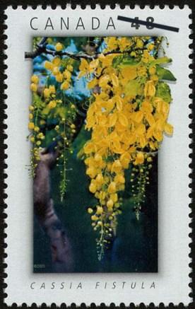 cassia-fistula-canada-stamp
